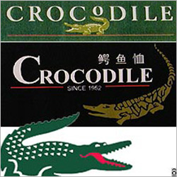 vstory.crocodile.logo